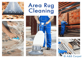 Rug Cleaning - Beverly Square West 11226